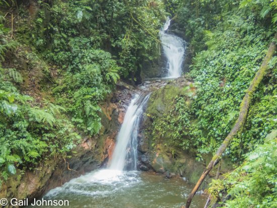 Monteverde Cloud Forest Reserve, Costa Rica: Waterfall