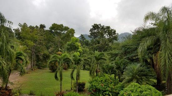 Belmopan, Belize: View from main restaurant