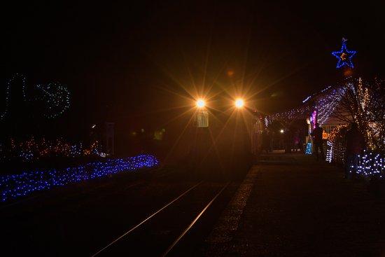 Ichihara, Japón: 2017月崎駅 上り電車出発