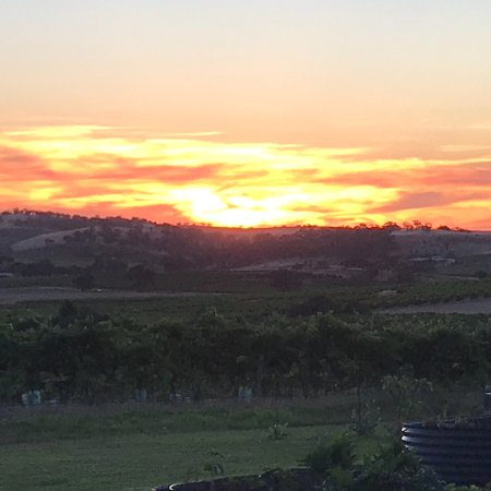Marananga, Australia: photo1.jpg