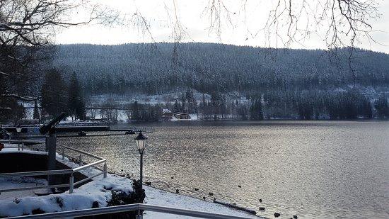 Lake Titisee: Lago Titisee.