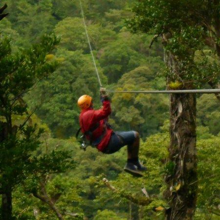 Επαρχία Πουνταρένας, Κόστα Ρίκα: FB_IMG_1512950519485_large.jpg