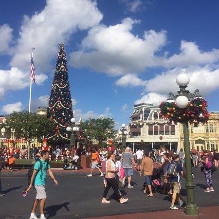 Walt Disney World, FL: photo8.jpg