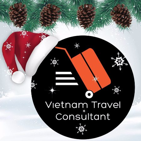 ‪Vietnam Travel Consultant‬