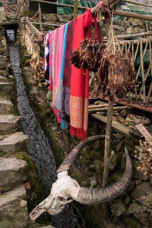 Liannan County, Trung Quốc: For Sale