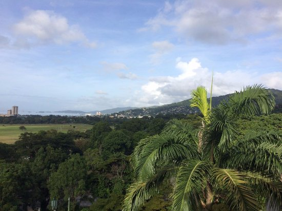 Hilton Trinidad & Conference Centre: View from Balcony