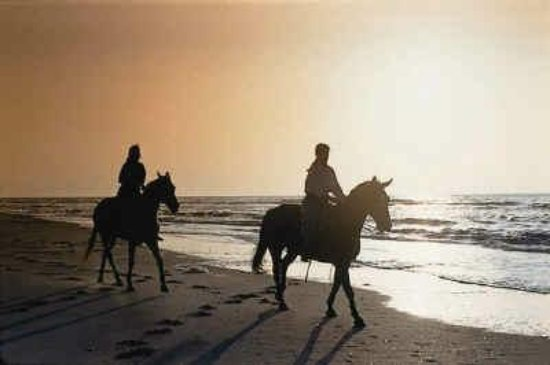 Cedar Island, Kuzey Carolina: Sunset trail rides