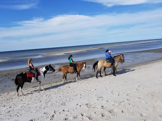 Cedar Island, Carolina del Norte: Exploring the beaches