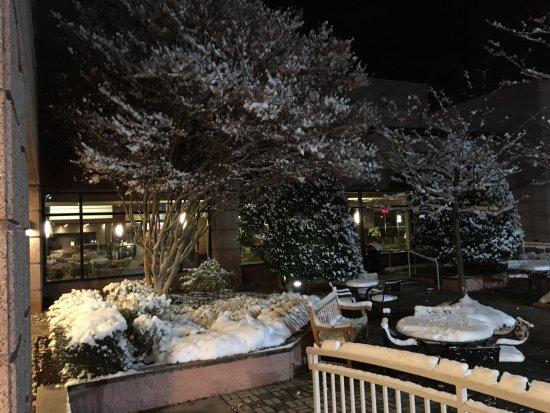 เฮิร์นดอน, เวอร์จิเนีย: Winter Wonder Land