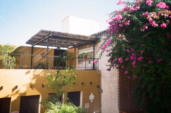 Luz En Yucatan: View from the 2nd floor