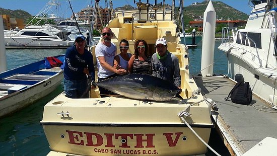 Dorados and wahoo aboard the super panga picture of cabo for Cabo san lucas fishing charters prices