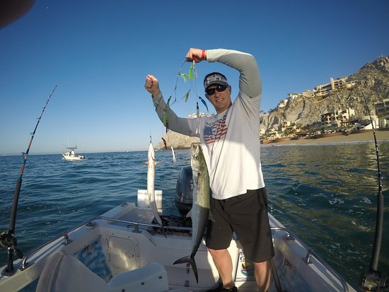 Jackcrevalle picture of cabo mahi mahi fishing charters for Cabo san lucas fishing charters prices