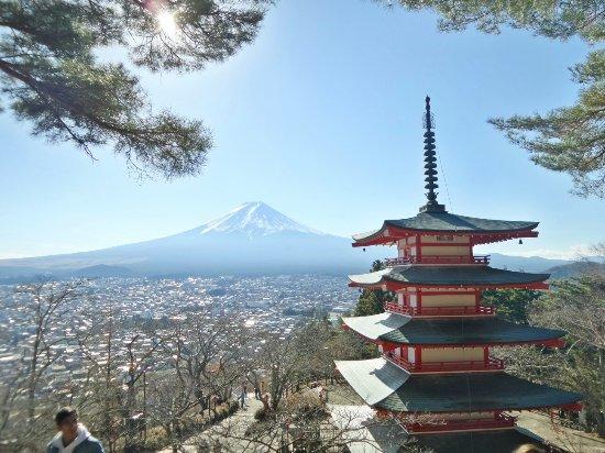 photo1.jpg - 富士市Turismo Victoria的图片 - TripAdvisor