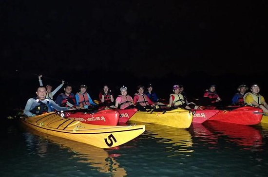 Twilight Mangrove Kayak Tour