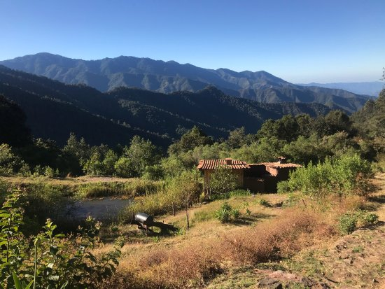 Miahuatlan, Mexico: Food and views