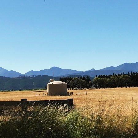 Μπλένχαϊμ, Νέα Ζηλανδία: photo7.jpg