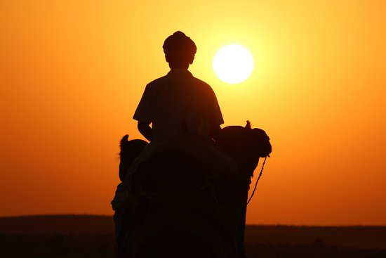 Mystic Camel Safari Day Tours