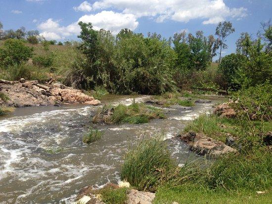 Lanseria, Sudafrica: Bottom view of River
