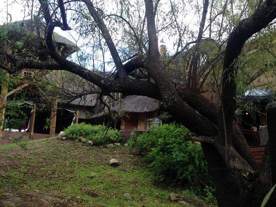 Lanseria, Sudafrica: View of Reception