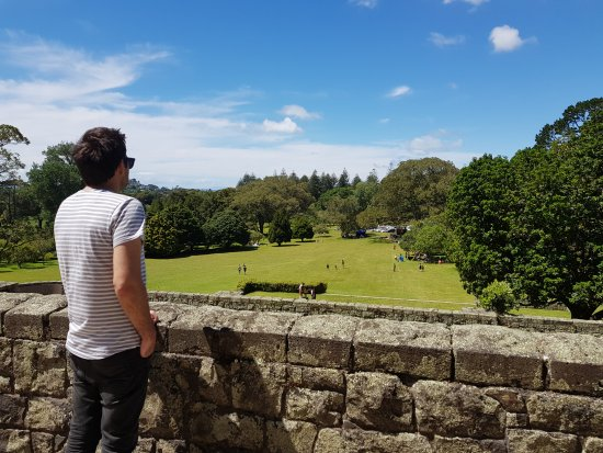 Cornwall Park: Massive area to run around and play games and beautiful views