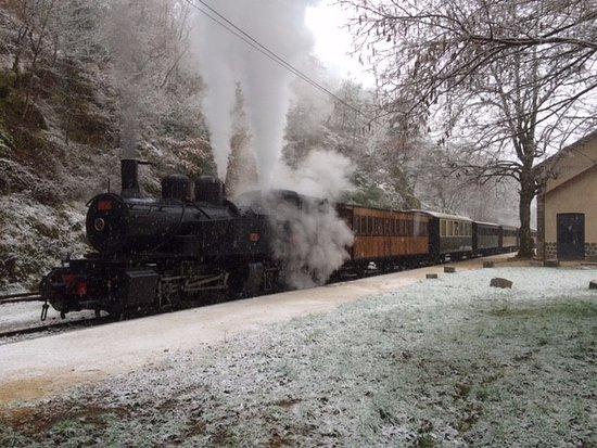 Tournon-sur-Rhone, France: Train à vapeur sous la neige