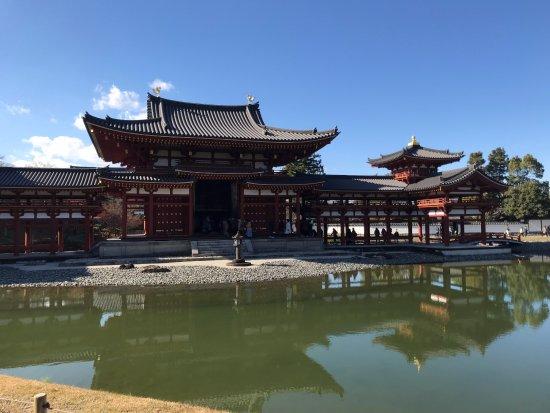 Byodoin Temple: 平等院鳳凰堂