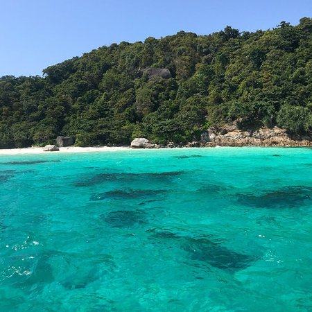 SweetDreamers Charters - Private Day Trips : photo7.jpg
