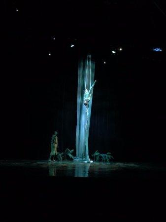 Ulalena by Maui Theatre: artistas