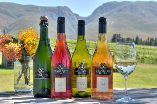 Stanford, Zuid-Afrika: Some of our range of Estate wines available for tasting and sales