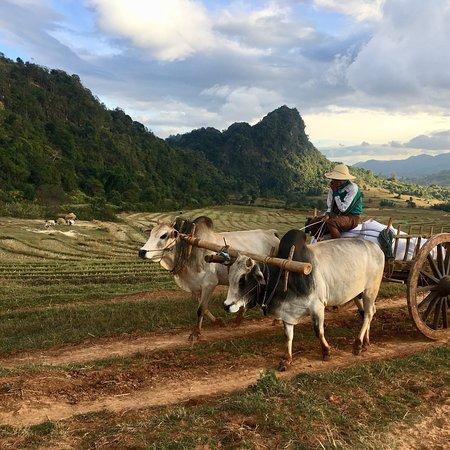 Kalaw, Birmânia: photo5.jpg