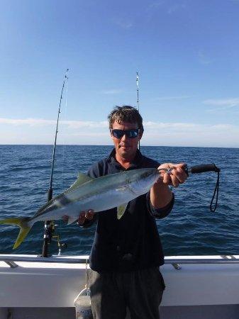 Balmain, Australia: Sydney Kingfish