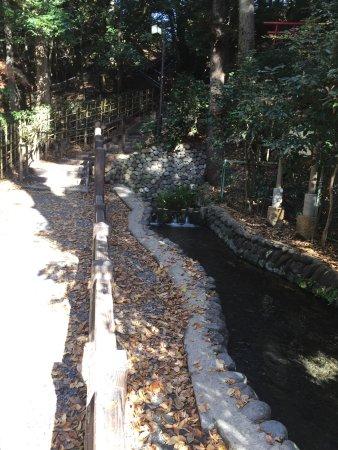Otaka no Michi Spring Park