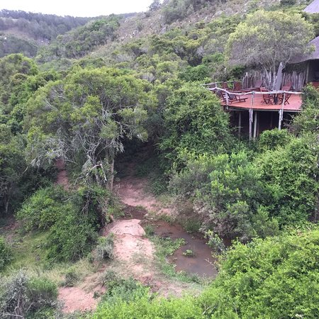 Lalibela Game Reserve: photo1.jpg