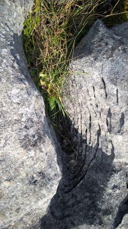 County Clare, Irland: Dolmen di Poulnabrone