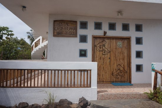 Casa Iguana Mar y Sol: The Front door hand carved by Luis