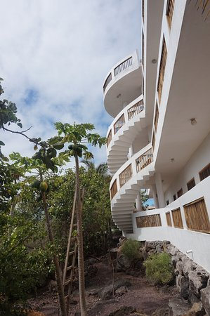 Casa Iguana Mar y Sol: The stairs going up to the rooms, built by Luis and designed by Patricia