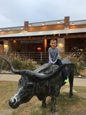 Broken Arrow, OK: Great grandson loved the bull.