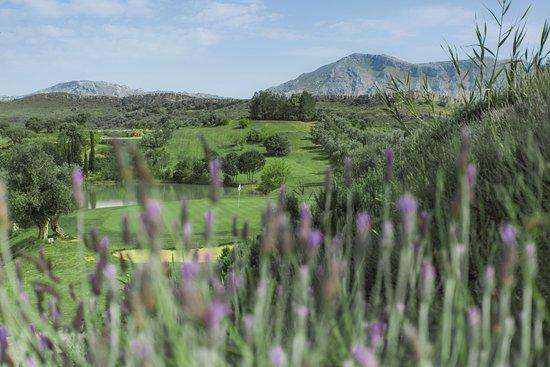 Vistas Desde La Terraza Del Campo De Golf Picture Of Golf