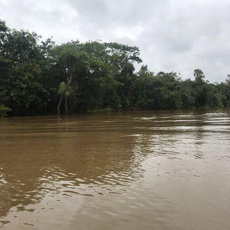 Rio Momon, Peru: photo0.jpg