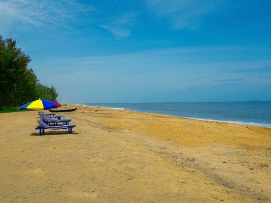 Meiveda ayurveda beach resort 131 168 updated 2018 prices meiveda ayurveda beach resort m4hsunfo