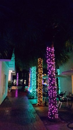 Neptune Beach, FL: 20171207_185017_large.jpg