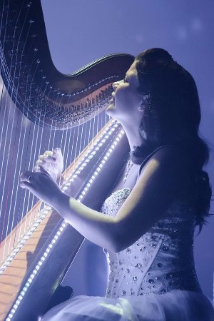 Branson, MO: Catherine Haygood is stunning on the harp and many more instruments.