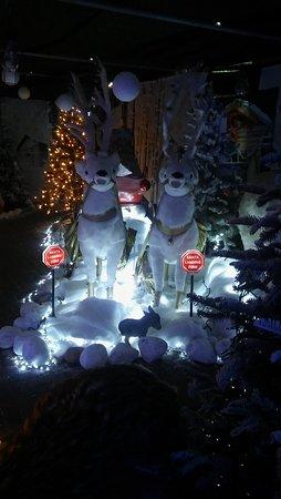 Rosebank, UK: Santa's Groto