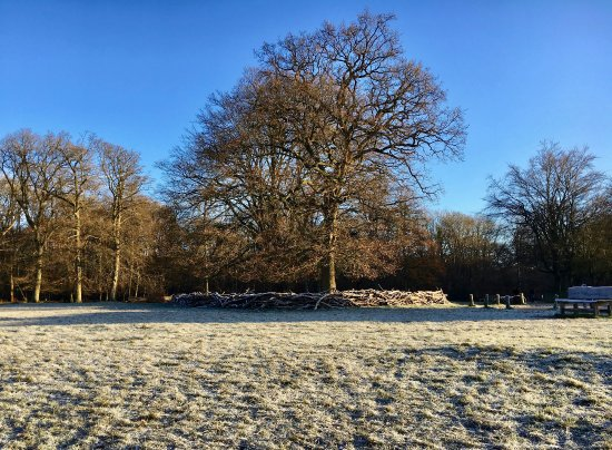 Berkhamsted, UK: December Sunday morning