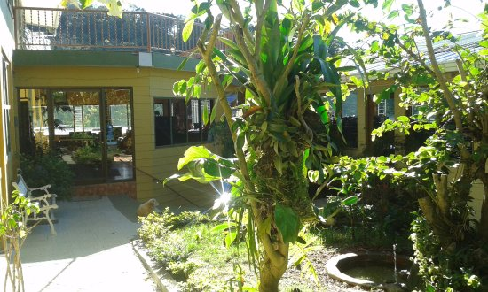 Hotel Don Taco Monteverde Reviews