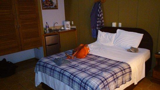 Arenal Green Hotel: View of room from door
