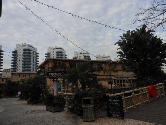 Con Dios: Ocean Village