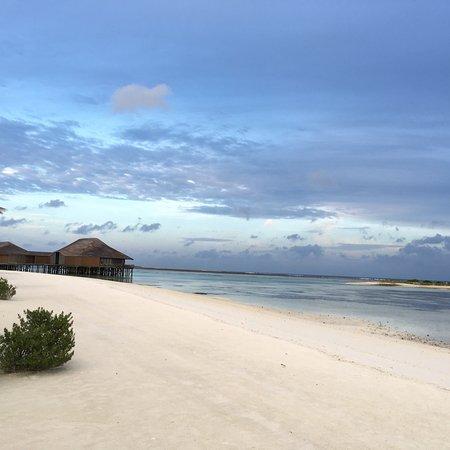 Finolhu Island Resort Tripadvisor