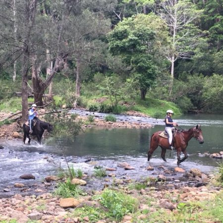Numinbah Valley Adventure Trails Camping