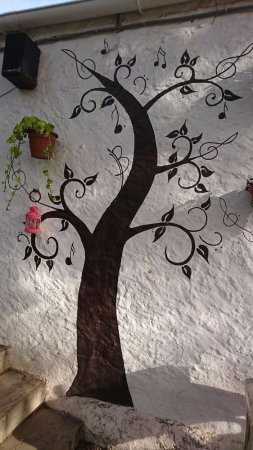 Province of Malaga, Espanha: Arboles magicos